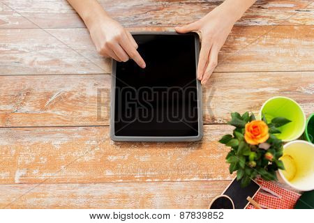 people, gardening, flowers and profession concept - close up of woman or gardener pointing finger to tablet pc computer black blank screen at home