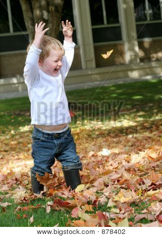 Fall Leaves Fun