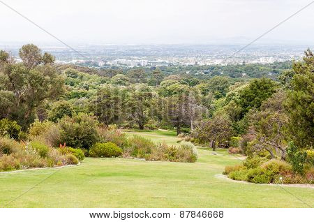 View Across Kirstenbosch National Botanical Gardens Towards Cape Town
