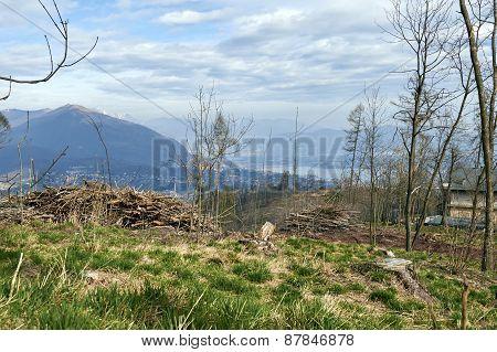 The Alpine Foothills Of Como
