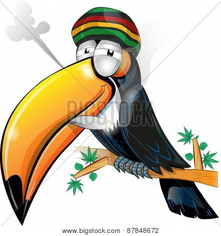 Jamaican Toucan Cartoon Isolated On White