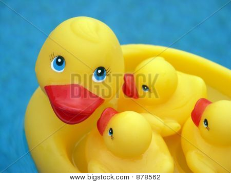 Rubber Ducky, You Are The One!
