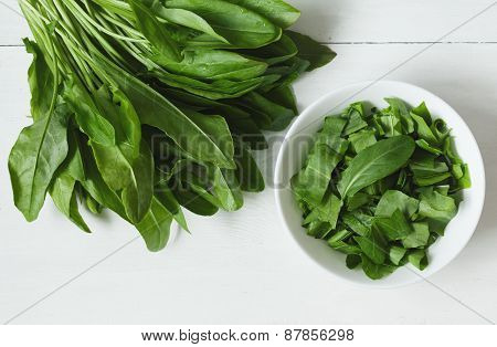 Fresh sorrel plant leafs in white bowl on rustic background