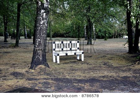 Beautiful bench in park