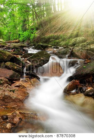Mountain creek in the national park Sumava