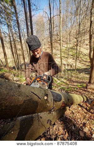Old Woodcutter At Work With Chainsaw