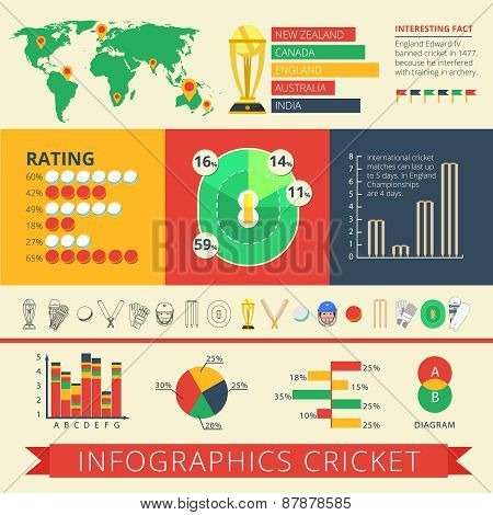 Infographics report cricket poster