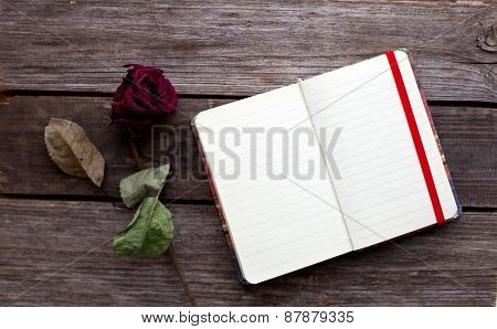 Dried Rose And Open Book On The Table