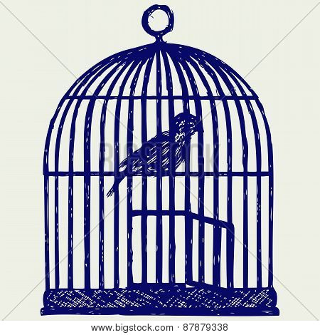 An open brass birdcage and bird