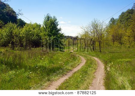Landscape Of A Grassy Valley With Forked Footpath, Forest And Sky