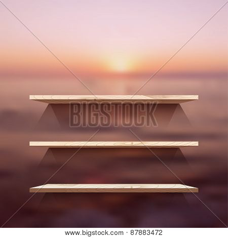 Empty Wooden Modern Shelves