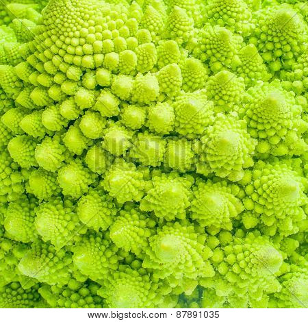 Broccoli Close Up Texture Fractal Background