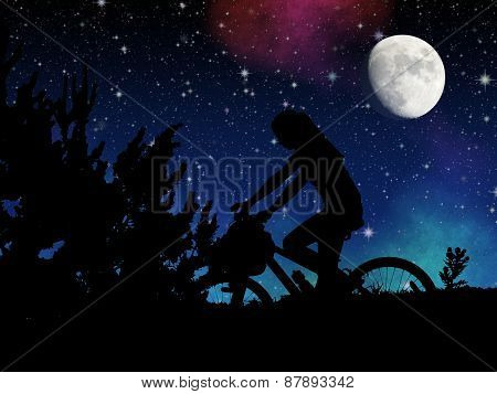 Bicycle Night Rider