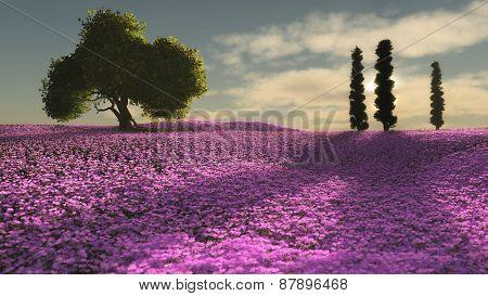 Pink Flowers Sea, 3D Cg
