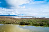 stock photo of wetland  - Landscape of a wetland in Tuscany with the sky that reflects itself on a lake - JPG