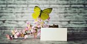 pic of yellow orchid  - Small Blank Note Paper with Yellow Green Butterfly on Beautiful Orchid Flowers Placed on Top of a Wooden Table with Abstract Background - JPG