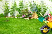 foto of wheelbarrow  - Wheelbarrow with Gardening tools in the garden - JPG