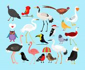 picture of pink flamingos  - Cute vector birds - JPG