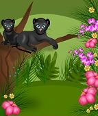 pic of panther  - Illustration of two black panthers on tree in jungle - JPG