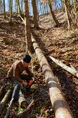 stock photo of man chainsaw  - Senior caucasian man woodcutter cutting down trees with chainsaw - JPG
