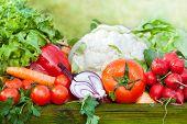 stock photo of farmer  - fresh organic ripe vegetables outdoor farmer market - JPG