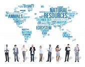 stock photo of environmental conservation  - Natural Resources Environmental Conservation Sustainability Concept - JPG