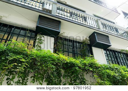 Classic style balcony with green plant at summer time