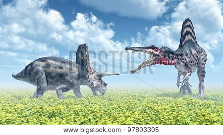 The dinosaurs Torosaurus and Spinosaurus