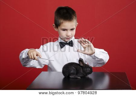 little magician with rabbit