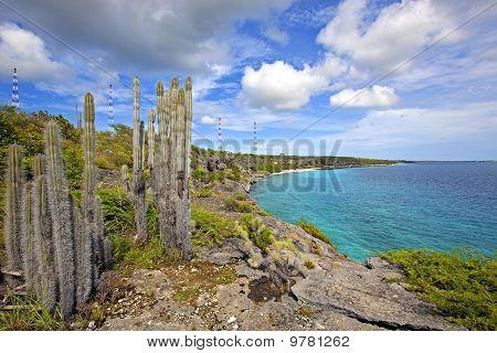 Bonaire-Küste
