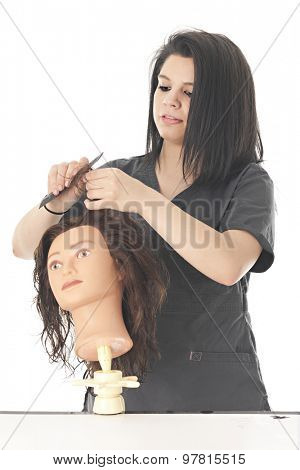 An attractive teen cosmetology student combing out the tangles on her practice hair dressing head.  On a white background.