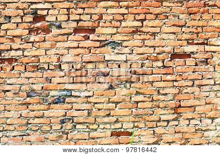 Colorful old vintage bricks wall texture with nicks