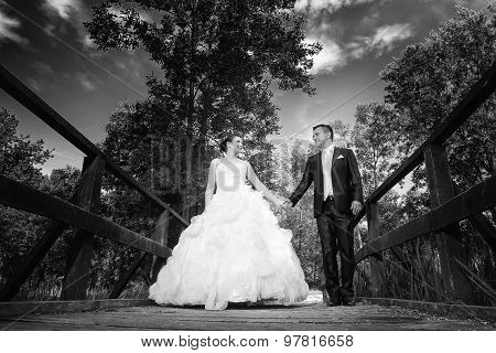Bride And Groom Holding Hands Bw