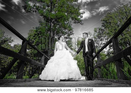 Bride And Groom Holding Hands Abstract