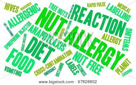Nut Allergy Word Cloud