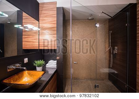 Dark Bathroom With Big Shower