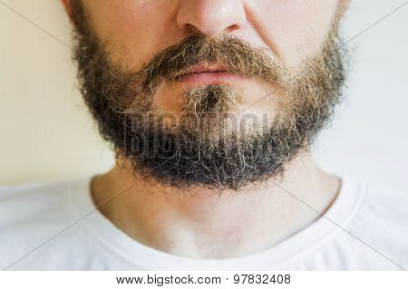 Bearded and mustache man