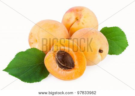 apricot fruits green leaf isolated on white