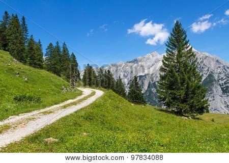 Path through summer mountain landscape. Austria. Tirol near Walderalm
