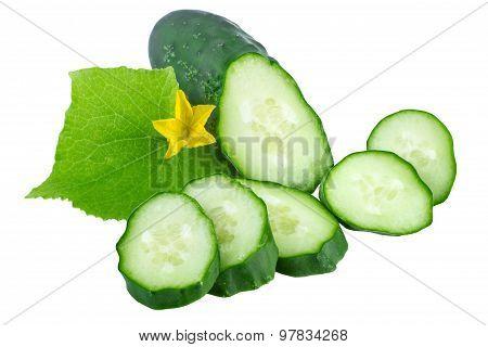 fresh cucumber organic vegetable