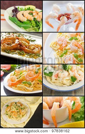 Shrimp Collage