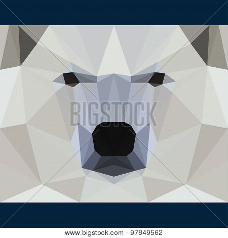 Wild Bear Stares Forward. Abstract Geometric Polygonat Triangle Illustration