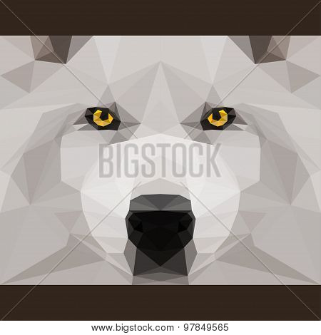 Wild Wolf Stares Forward. Abstract Geometric Polygonat Triangle Illustration