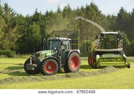 Agriculture, Forage Harvester And Transport Grass With Green Tractor And Grass Trailer.