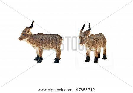 Isolated wild goat toy