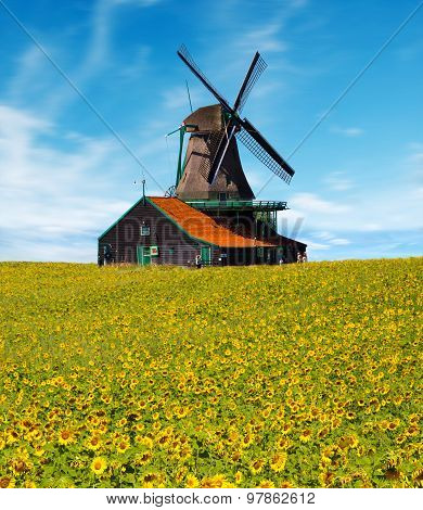 Windmill With Sunflower Field