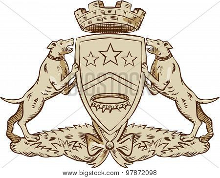 Pitbull Dog Coat Of Arms Etching