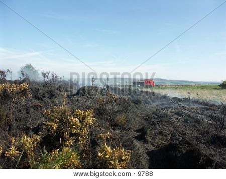 Burnt Fields On Pendle Hill