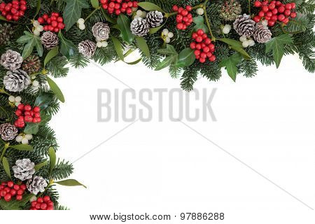 Christmas and winter background border with holly, ivy, mistletoe, blue spruce fir and pine cones over white.