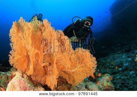 Female scuba diver explores coral reef underwater